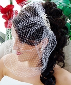 Birdcage Veil with Silver Elegant Pearl & Rhinestone Bridal Comb 8955***Discontinued***