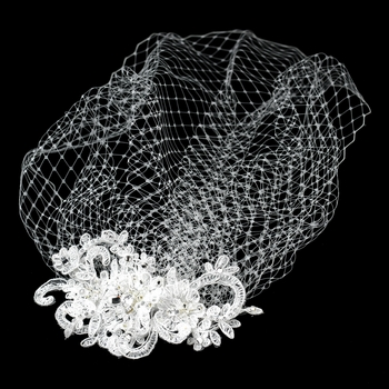 Vintage Feather Rhinestone Hair Comb & Russian Blusher Veil Cage 2718