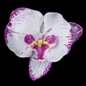 Magenta Touched Orchid Flower Hair Clip 9947