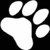 Dog Paws set of 8