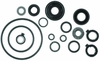 18-2628 Lower Unit Seal Kit