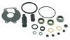 18-2629 Lower Unit Seal Kit