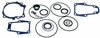 18-2672 Lower Unit Seal Kit