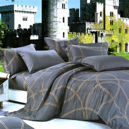 [Reminiscent Mood] Luxury 7PC Bed In A Bag Combo 300GSM (King Size)
