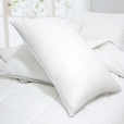 Set of 2 Luxurious Down Alternative Standard Pillow
