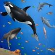 Sea Animals Mural