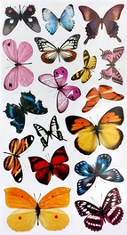 Butterflies - Wall Decals Stickers Appliques Home Decor