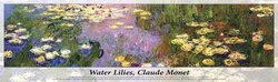 Monet Water Lilies 750 Piece Panoramic Puzzle