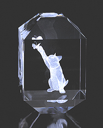 Cat with Butterfly Crystal Impressions