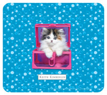 Keith Kimberlin Kitten in Pink ox Mouse Pad