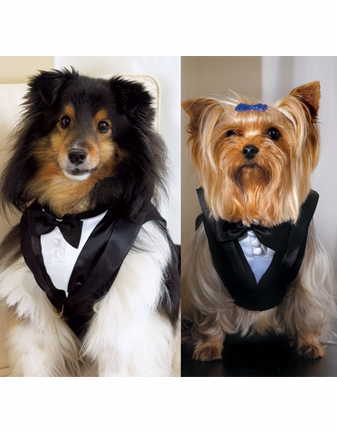 CLEARANCE: Dog Tuxedo in Black and White Satin