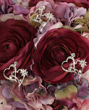 Double Heart Silver and Crystal Bouquet Jewelry (Set of 3)