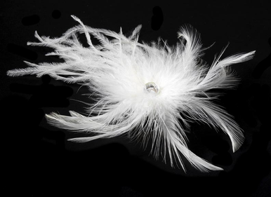 Bridal Feather Hair Fascinator Clip in White or Ivory