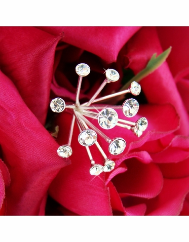 Set of Two Crystal Glow Bouquet Jewelry
