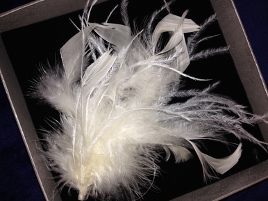 Ostrich Feather Hair Comb - Feather Hair Clip