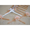 Designer Bridal Party Garment Hanger