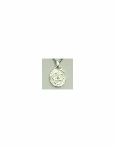 Silver Over Pewter Family Medallion®