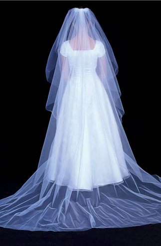 En Vogue Raw Edge Bridal Veil with Scattered Micro-Dot Rhinestones V60WC