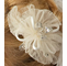 Adorable Flower Hair Comb 8008