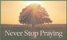 Never Stop Praying Weekly Reflection Questions &ndash; <i>Free e-Resource</i>