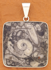 Silver Fossil Mossaic Stone Pendant
