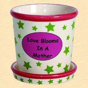 Love Blooms in a Mother Tumbleweed Whimsical Planter
