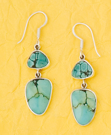Sterling Silver Turquoise Freeform Earrings