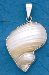 Silver Mouth Shell Pendant