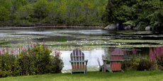 Chairs by the Lilypond