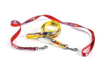 Colorful Dog Leashes by Britto
