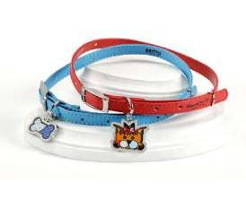 Dog Collar 2 by Britto