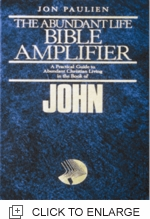 Bible Amplifier - John (Hc)