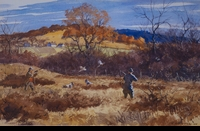 RIPLEY:  PHEASANT MEADOW</a><br><b>- SOLD</b>