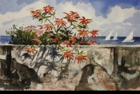 RENESON: POINSETTIA</a><br><b>- SOLD</b>