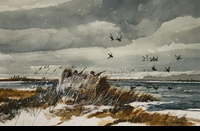 RENESON: SNOW CLOUDS AND BLACK DUCKS</a><br><b>- SOLD</b>