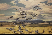 ADAMSON: THE GLEANERS - WHITE-FRONTED GEESE</a><br><b>- SOLD</b>