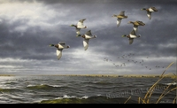 HAUTMAN:  BIG WATER MALLARDS</a><br><b>- SOLD</b>