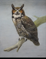 HINES:  HORNED OWL</a><br><b>- SOLD</b>