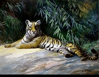 HINES:  ROUGH SKETCH -RECLINING TIGER