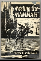 WEBER:  MEETING THE MAMMALS
