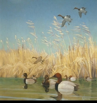 JAQUES:  COASTAL MARSHES</a><br><b>- SOLD</b>
