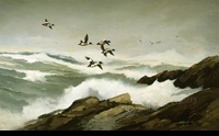 LOG�:  ROCKY COAST - GOLDENEYES</a><br><b>- SOLD</b>