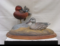 KERR: CINNAMON TEAL PAIR