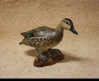 KERR:  GREEN-WING TEAL HEN</a><br><b>- SOLD</b>