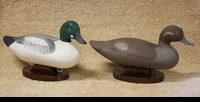 MITCHELL: GOLDENEYE PAIR</a><br><b>- SOLD</b>