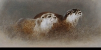 "CHEYNE:  OTTER SKETCH</a><br><font color=""#ffffff""><b> - SOLD</b></font>"