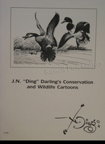 "DARLING:  J.N. ""DING"" DARLING'S<br>CONSERVATION & WILDLIFE CARTOONS"