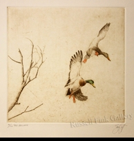 "SCOTT:  TWO MALLARDS</a><br><font color=""#ffffff""><b>- SOLD OUT</b></font>"