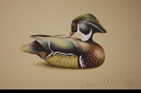"SCOTT:  WOOD DUCK DECOY - DRAKE<font color=""#ffffff"">"