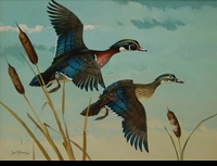 LEBLANC:  WOOD DUCKS</a><br><b>- SOLD</b>